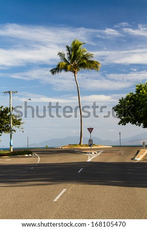Palm tree at a roundabout, Magnetic Island, Queensland, Australia - stock photo