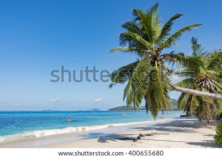 Palm tree bent over tropical beach, turquoise ocean, sand, blue sky, Seychelles islands