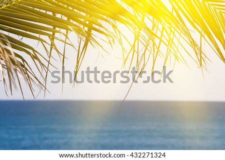 Palm tree foliage  against turquoise caribbean sea water. Tropical summer vacation concept - stock photo