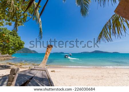 Palm tree on Bangtao beach. Thailand. Phuket island. - stock photo