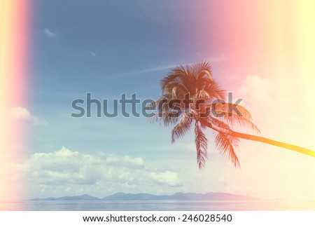 Palm tree on tropical shore, vintage stylized with film burn light leaks - stock photo