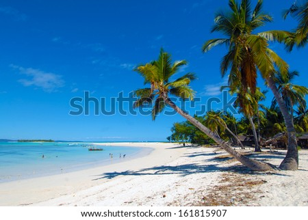 Palm tree on white sand beach and blue lagoon, in the paradise island of Nosy Iranja island, in Madagascar