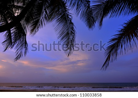 Palm tree pal fronds framing a beautiful Puerto Rico sunset with clouds over the atlantic ocean - stock photo