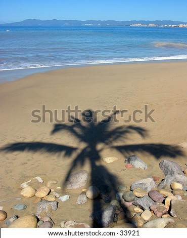 Palm tree shadow in Puerto Vallarta, Mexico - stock photo