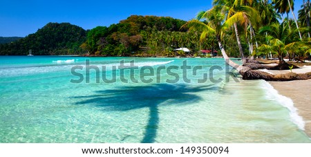 Palm tree shadow in sea water - stock photo