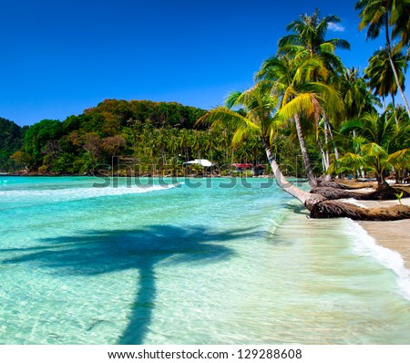 Palm tree shadow on sea water and tropical beach - stock photo