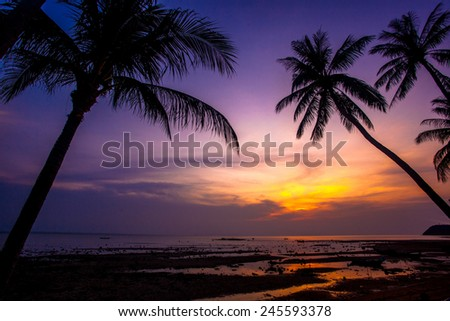 Palm tree silhouette on sunset tropical beach. Thailand - stock photo