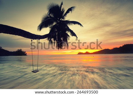 palm tree sunset golden blue sky back light on seychelles island