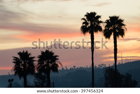 Palm Tree West Coast Tropical California Sunset Skyline - stock photo