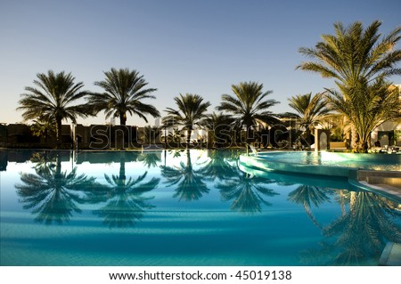 Palm tree with reflection on blue swimming pool - stock photo