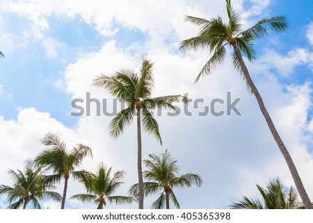 Palm trees against blue sky in Samui Thailand