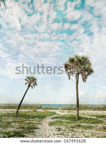 """Palm trees and blue skies on a vintage-styled textured paper """"postcard"""". Wish you were here!  - stock photo"""