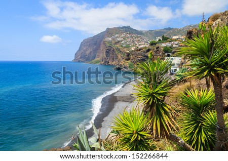Palm trees and Cabo Girao cliff ocean view, Camara de Lobos town near Funchal, Madeira island, Portugal - stock photo