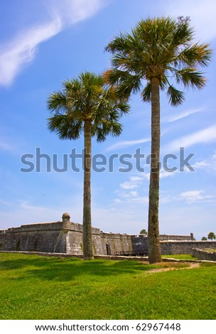 Palm trees and Fort Castillo de San Marcos , St. Augustine, Florida, US - stock photo