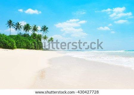 Palm trees and green tropical bushes on ocean beach - stock photo