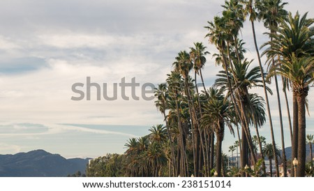 Palm Trees and Mountain off in Background on Beautiful Tropical Day in Santa Monica Los Angeles California on the West Coast Vacation - stock photo