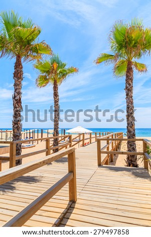 Palm trees and wooden walkway to beach in Armacao de Pera seaside town, Portugal