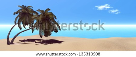 Palm trees at the tropical beach by beautiful day - stock photo