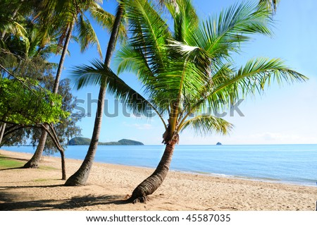 Palm trees at tropical Palm Cove beach with view on Double Island, Australia - stock photo