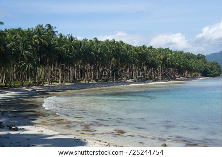 Palm trees at white sand beach with turquoise sea, Port Barton, Palawan, Philippines