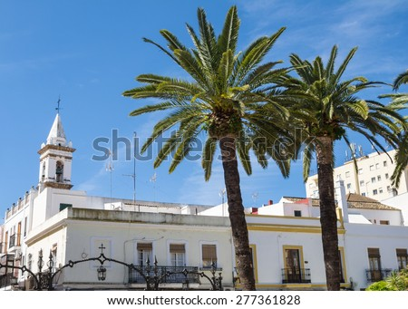 Palm trees in Ayamonte, Laguna square, Huleva, Andalucia, Spain - stock photo