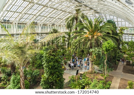Palm trees in Palm house in Kew Gardens. Richmond, London, UK. - stock photo