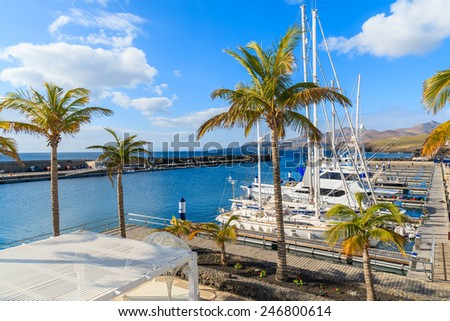 Palm trees in Puerto Calero marina built in Caribbean style, Lanzarote island, Spain - stock photo