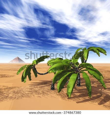 palm trees in the desert, pyramid and palms, an oasis in the desert, the clouds over the desert - stock photo