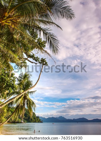 Palm trees line the beach at a local beauty spot near the ocean in eastern Thailand