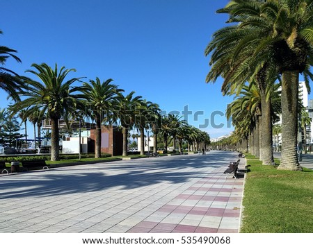 Palm trees lined promenade of Salou, province of Tarragona, in Catalonia. Spain