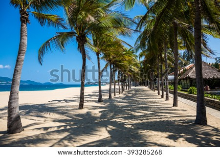 Palm trees on a beautiful resort beach - stock photo