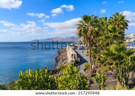 Palm trees on promenade along ocean coast in Puerto del Carmen holiday town, Lanzarote, Canary Islands, Spain - stock photo
