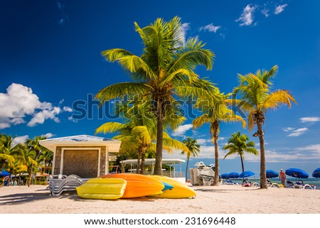 Palm trees on the beach in Key West, Florida. - stock photo