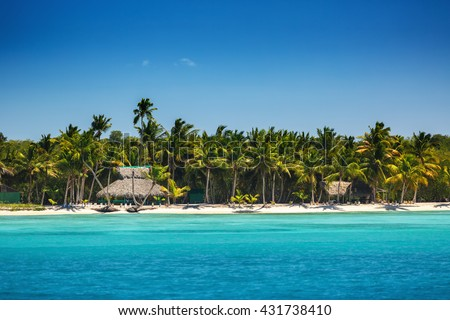 Palm trees on the tropical beach, Dominican Republic - stock photo