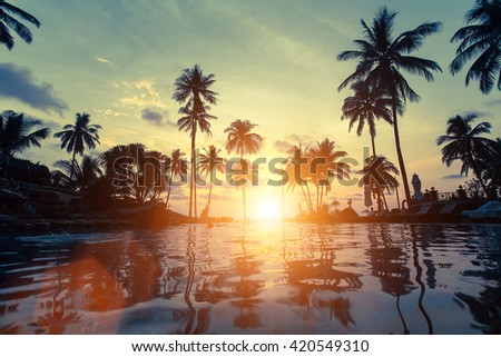 Palm trees reflection in the water on a tropical seaside during amazing sunset. - stock photo