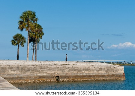 Palm Trees, seawall, and Vilano Beach Bridge in St Augustine, Florida - stock photo