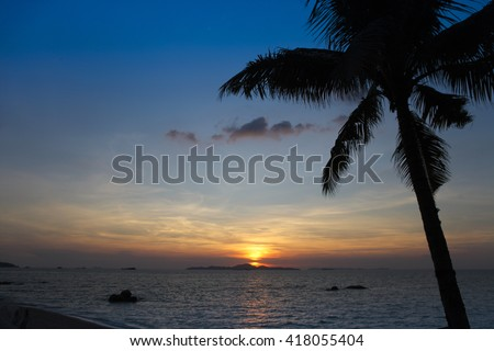 Palm trees silhouette at sunset, Pattaya, Thailand - stock photo
