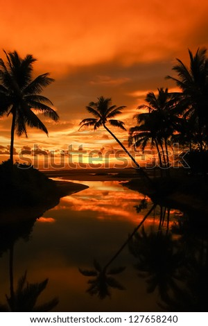 Palm trees silhouette at sunset Thailand - stock photo