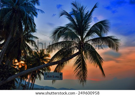 Palm Trees silhouettes on the Colorful Sky Sunset or Sunrise background. A white board hanging on the tree with Koh Samui inscription - stock photo