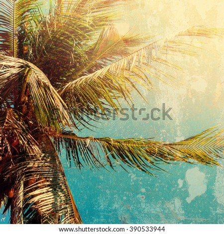 Palm Trees Sun Light Hot Equator Nature Landscape Tropical Background Holiday Travel Design Toned Shabby Vintage Effect - stock photo
