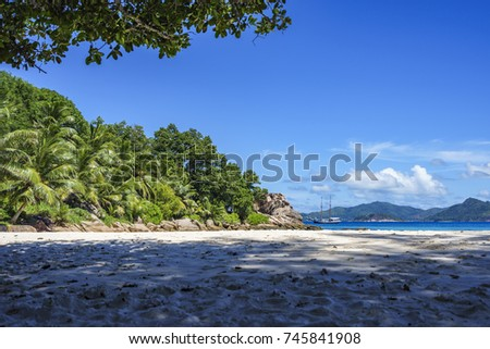 Palm trees, white sand and turquoise water at the paradise beach of anse severe, la digue, seychelles. A beautiful tropical lagoon...