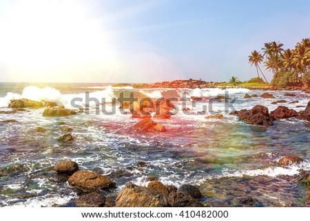 Palm tropical beach. landscape rocky coast ocean. Sri Lanka. - stock photo