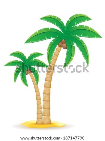 palm tropical tree illustration isolated on white background