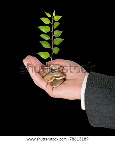 Palm with a sapling growing from pile of coins - stock photo