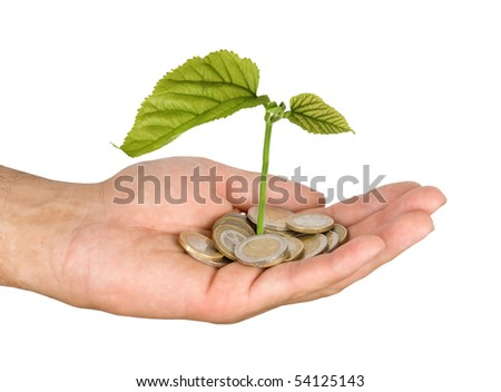 Palm with a tree growng from pile of coins - stock photo