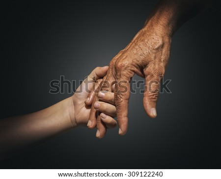 palm youth and adults - stock photo