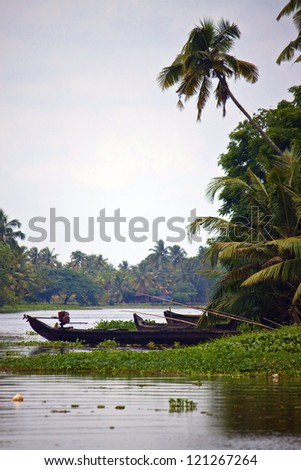 Palms along canals and lakes in Backwaters, Kerala, India - stock photo