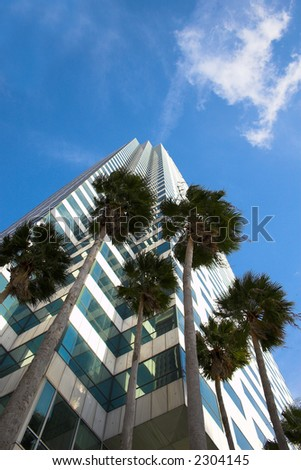 palms and glass.. Tall building....