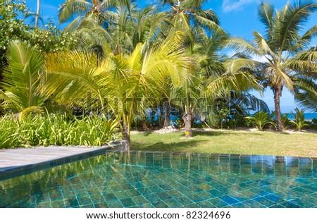 Palms Exotic Pool - stock photo