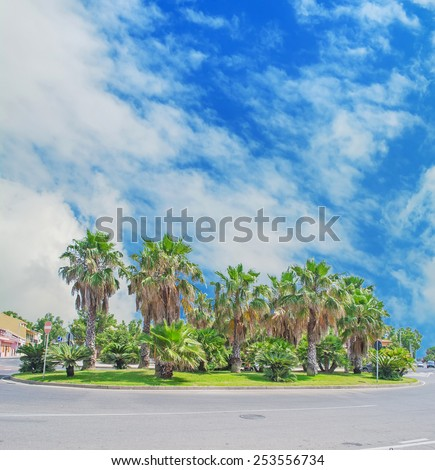 palms in a roundabout under a cloudy sky. Shot in Sardinia, Italy - stock photo